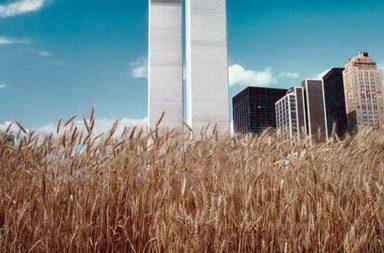 A wheatfield in the heart of Manhattan, 1982