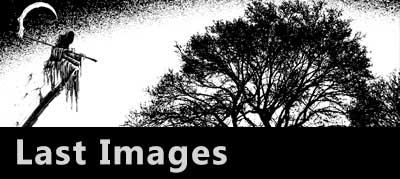Last Images