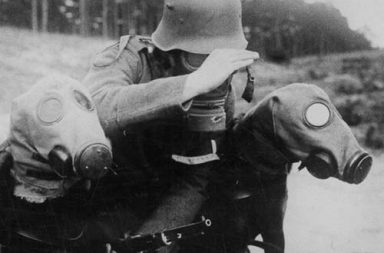 War dogs with gas masks, 1915-1970